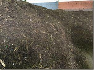 久喜宮代チップに生ごみを混ぜる 土壌改良剤として熟成して一部使う