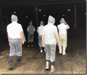匂いがひどいとのことでレインコートとマスクをつけ施設の名中へ